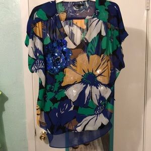 Sparkling blouse with sheer blue under blouse